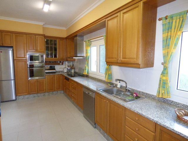 7305795-kitchen